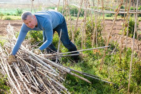 Male horticulturist working with wooden girders in garden