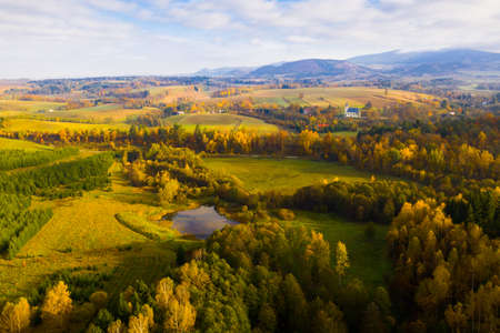 Aerial view of the autumn forest and hills in the