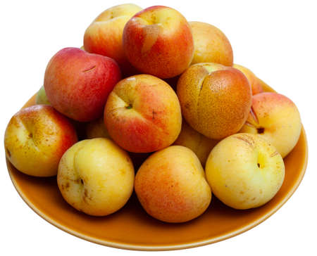 Fresh ripe apricots on white