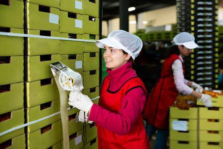 Adult workwoman sticking labels on carton boxes