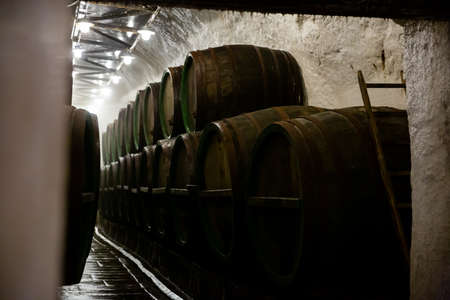 Rows of wooden barrels in beer brewhouse