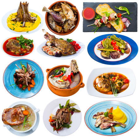 Set of lamb dishes isolated