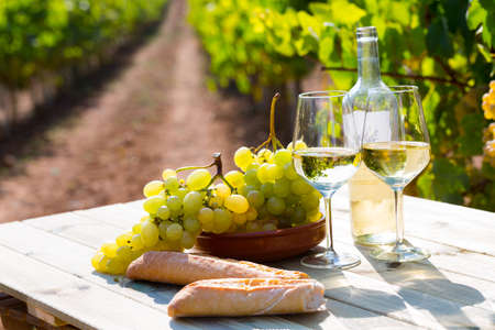 Still life with white wine, grapes and fresh bread in vineyards