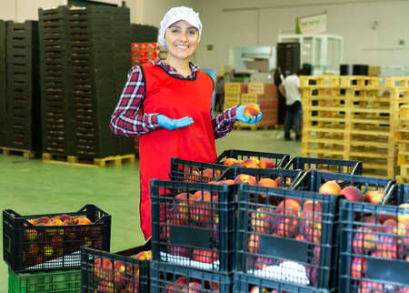 Woman in uniform posing with peaches in hands on the background of an automatic line sorting fruits