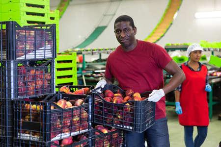 Attentive male worker standing near boxes 免版税图像