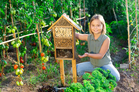 Little girl and insect hotel