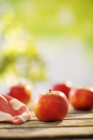marmalade: apples on table s garden