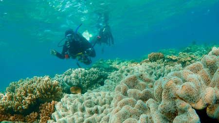 Underwater Photo Stock Photo