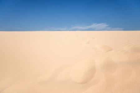 desert sand: sand desert in vietnam