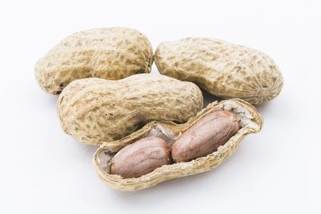 peanut on white background