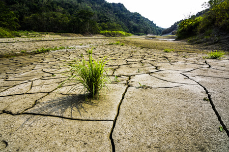 Land with dry, cracked ground and grass. Stock Photo