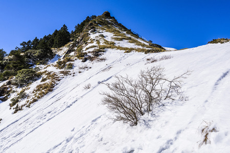 Mountain with snow and blue sky in Hehuan, Taiwan, Asia.