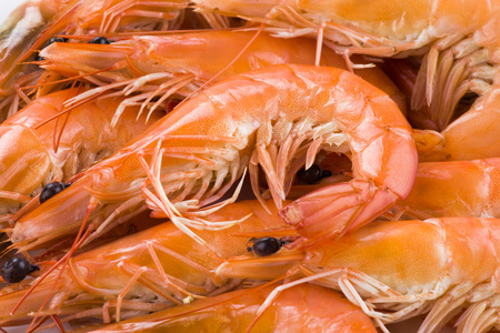 Close up of fresh boiled shrimp isolated on white background