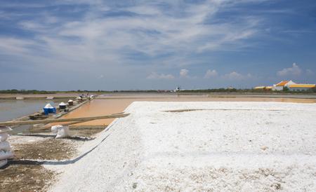 Sea salt field in Thailand
