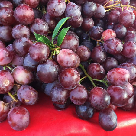 bunches: Bunches of red grape berry in fresh fruit market