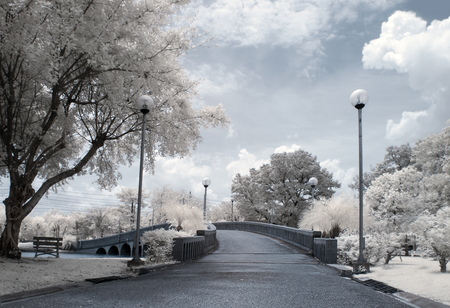Near Infrared or IR photo panoramic view of outdoor public park