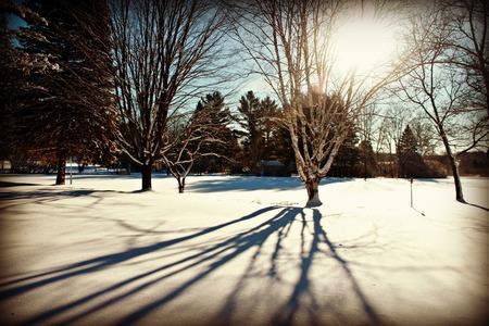 michigan snow: Winter Shadoes Stock Photo