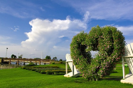 Travel in the Lovely Garden Stock Photo - 7383553