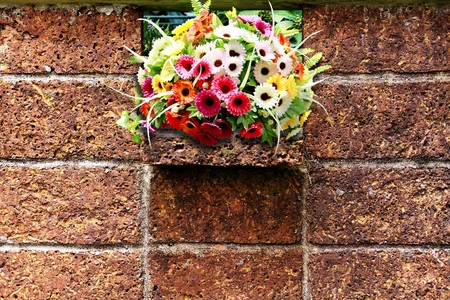 Wall stone texture with colorful flower  photo