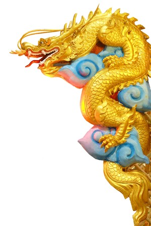 dragon head: Golden dragon on white  Stock Photo