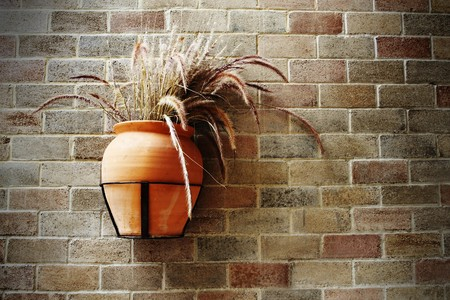 Old grasspot on brick wall Stock Photo - 7651954