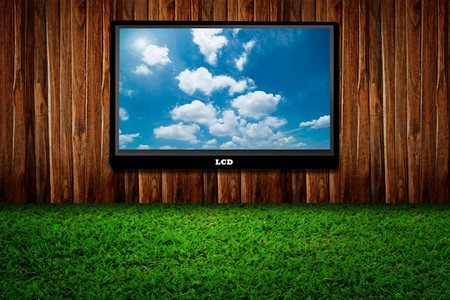 Interior with a television set on green grass against wooden wall  photo