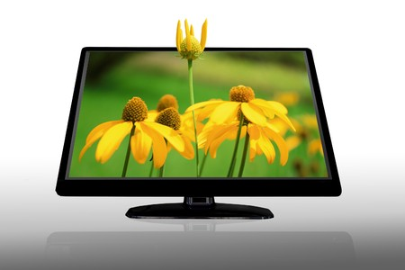 LCD display showing 3D yellow flowers isolated on white  photo