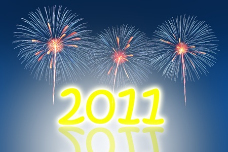 new year 2011  photo