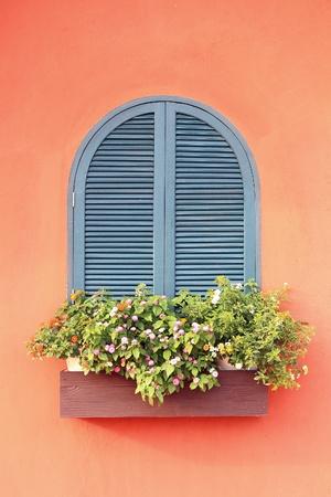 Beautiful window with flower  photo