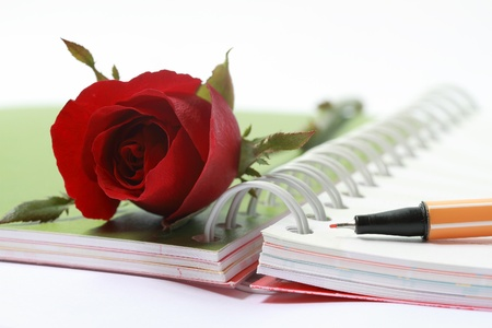 Open blank note book and pen with red rose Stock Photo