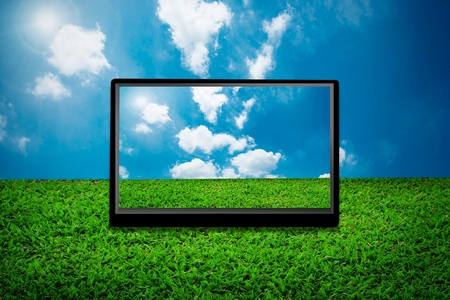 lcd display: 3D TV
