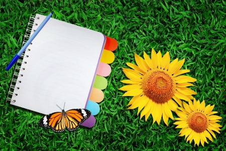 Open note book and sun flower on green grass   photo