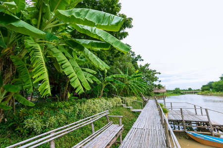 Bamboo bridge by the river in Lop Buri Province in Thailand Stock fotó
