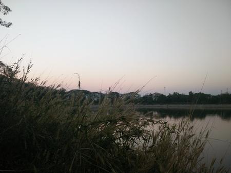 catchment: sunset