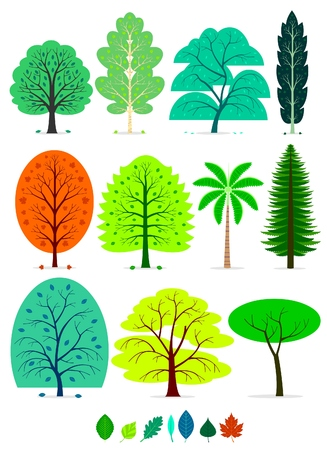 walnut tree: Various of Trees in simplified flat vector cartoon