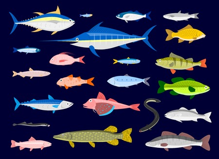 fresh water smelt: 22  Fishes  vector cartoon Illustration