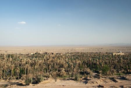 garmeh oasis landscape in iran desert Stock Photo - 9364350