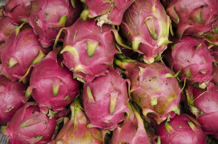 tropical dragon fruit in vietnam market photo
