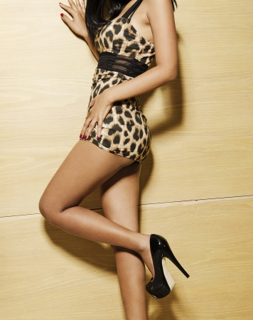 sexy, female, model, dress, girl, woman, fashion, attractive, body, leopard, print, posing Stock Photo