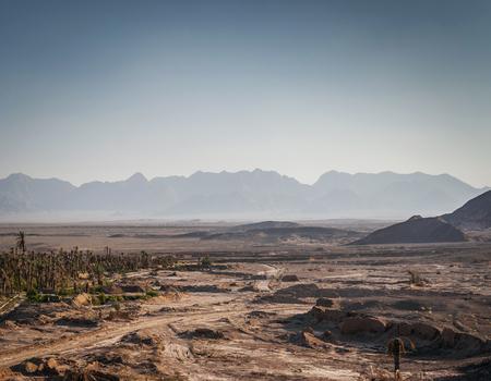 desert landscape view in garmeh oasis near yazd southern iran