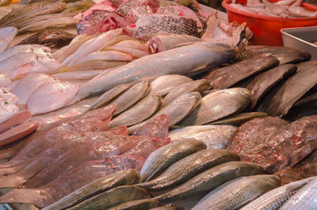 In numerous trading numbers of Hong Kong fresh fish, only, that caught in the sea is on sale    photo