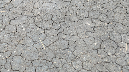 waterless: Cracked in Black Dry Soil Ground Background Texture