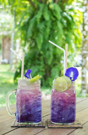Relax with  Herbal Tea Drinks for Healthy Life in The Green Park Concept, Couple Glasses of Gradient Purple Butterfly Pea Juices Decorated with Flowers and Lemons on Wooden Table in The Green Park