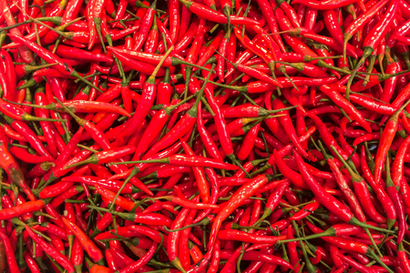 Top View Pile of Fresh Red Hot Chili in The Basket for Sale in Bangkok, Thailand Background Texture or or Template to mock up or input Text