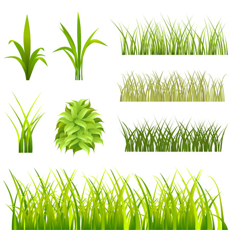 landscaped: set of grass  Illustration