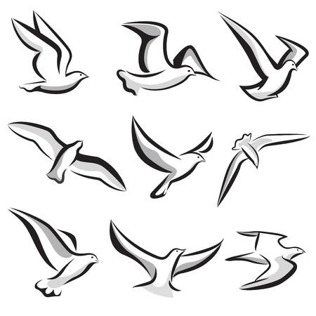 seagull: bird set