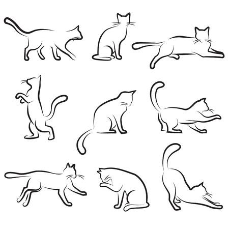 cat illustration: cat drawing set