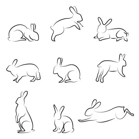 bunnies: rabbit drawing set