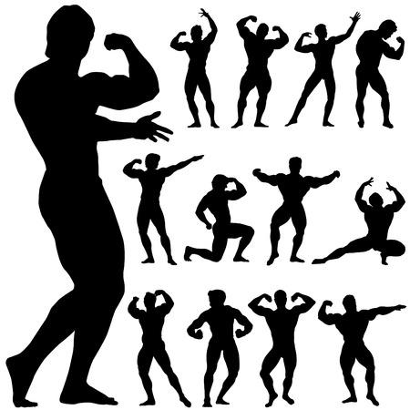 trizeps: Bodybuilding