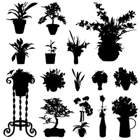 flower pot: flower